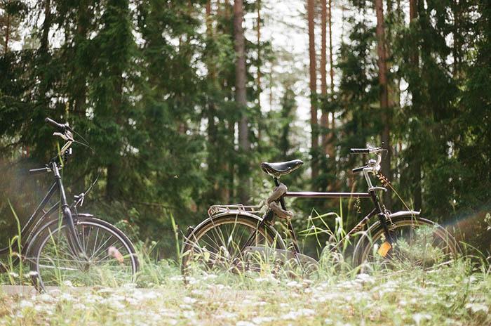 velo mežā