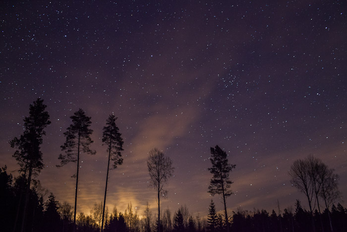 Meža Planetārijs