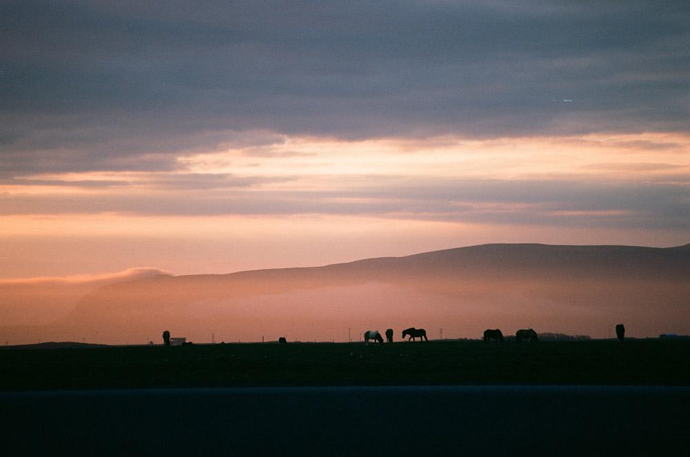009-Islande-Iceland-Roadtrip