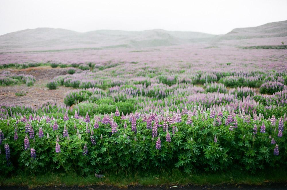 021-Islande-Iceland-Roadtrip
