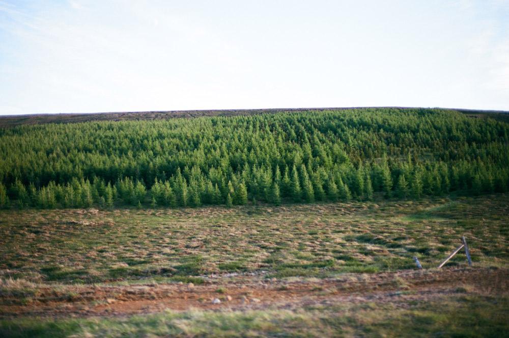 033-Islande-Iceland-Roadtrip