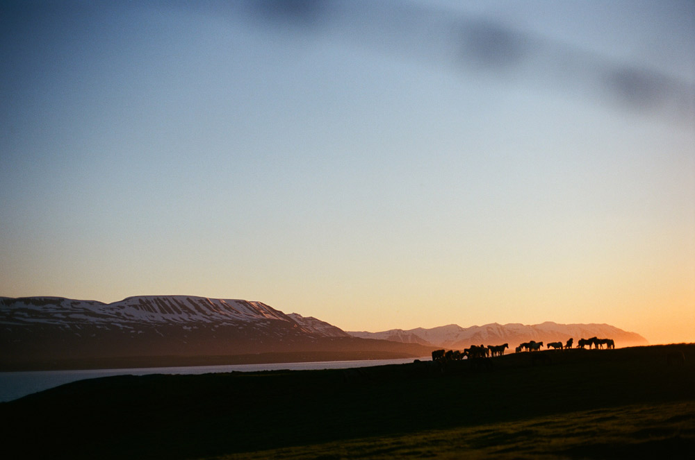 036-Islande-Iceland-Roadtrip