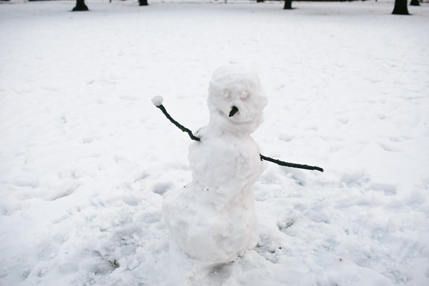 Nav divu vienādu sniegavīru