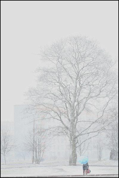 04-sniegorbita-2.jpg