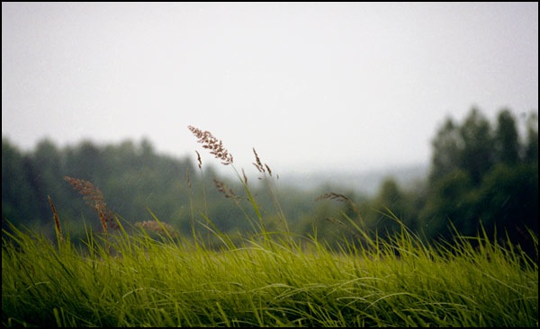 200807-blog-pierobeza.jpg